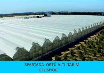 WEB ÖRTÜ ALTI TARIM HABERİ (1)2